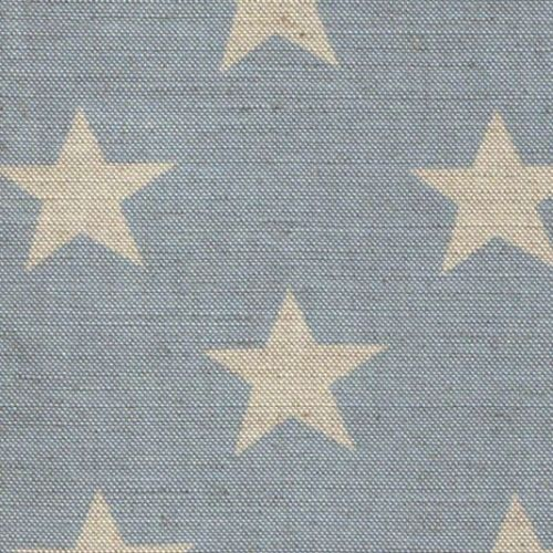 Big Star Fabric