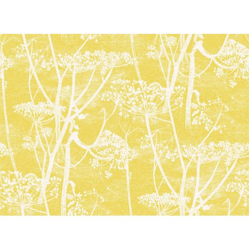 Cow Parsley Wallpaper