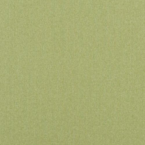 Carnival Plain Fabric in Grass