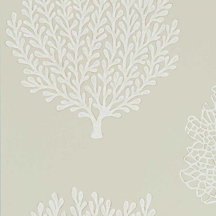 Coraline Wallpaper In Driftwood Port Isaac Wallpaper Collection By Sanderson Designer Feature Wallpapers