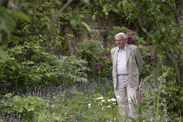 Sir David Attenborough, winner of the Charleston-EFG John Maynard Keynes Prize