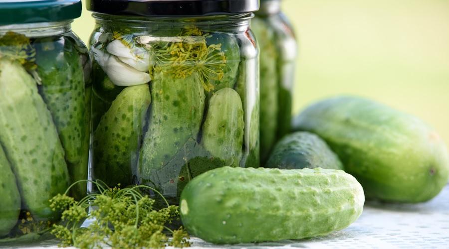 Different Methods of Food Preservation
