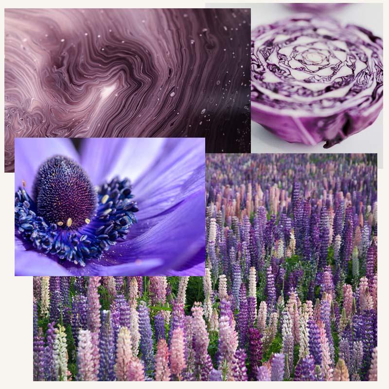 Purple Collage Inspiration